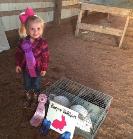PreSchool Student Wins at District Fair