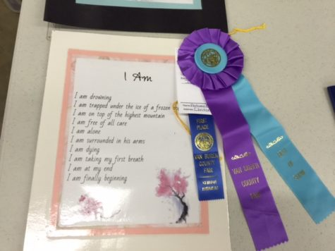 CHS Students Win in Art Division at VBC Fair