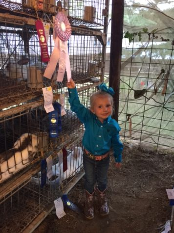 Clinton Pre-School Students Show and Win at VBC Fair