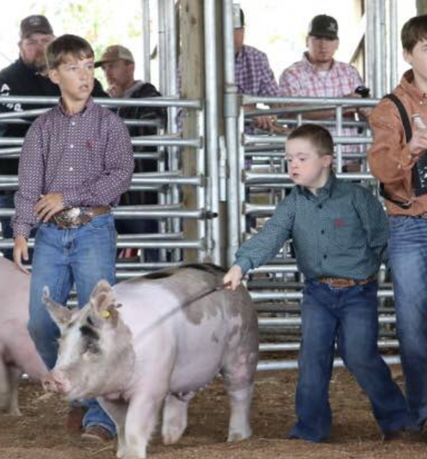 North+Central+Arkansas+District+Fair+Livestock+Show